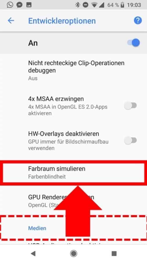 Graustufen auf Android Schritt 5